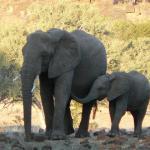 Kanda, Botswana (2)