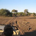 Kanda, Botswana (21)