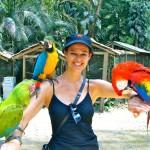 Macaw Mountain Bird Park, Copan, Honduras 2013